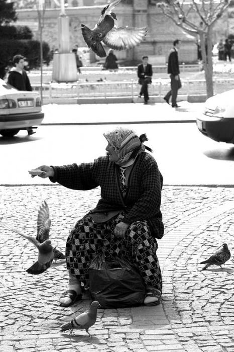 Кормить голубей - (Стамбульские картинки)