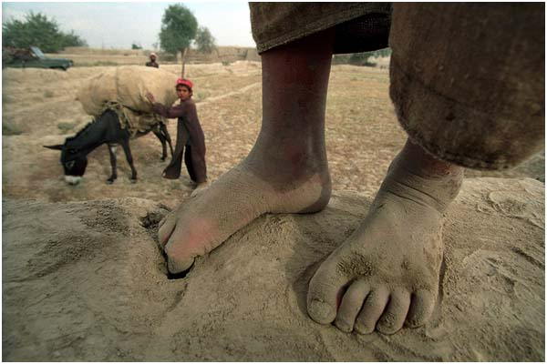 Сергей Максимишин. Мальчик, нагружающий осла. Афганистан. 2001 год