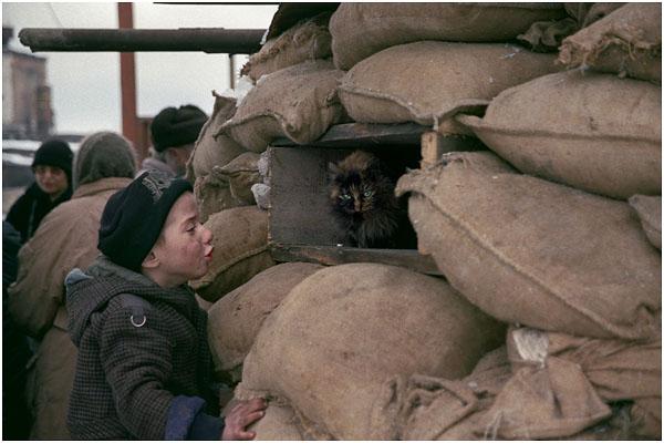 Сергей Максимишин. Грозный. Чечня. 2000 год