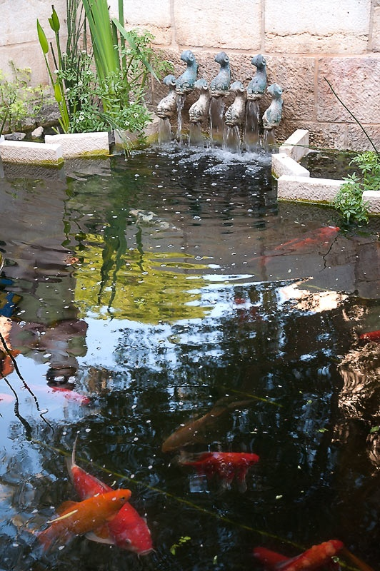 Храм Приумножения рыб и хлебов