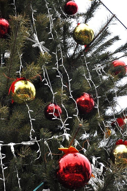 «Свет Рождественской звезды». Красноармейск