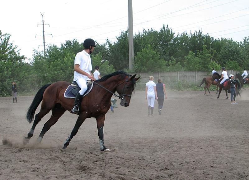 Чемпионат Донецкой области по конному спорту (конкур)
