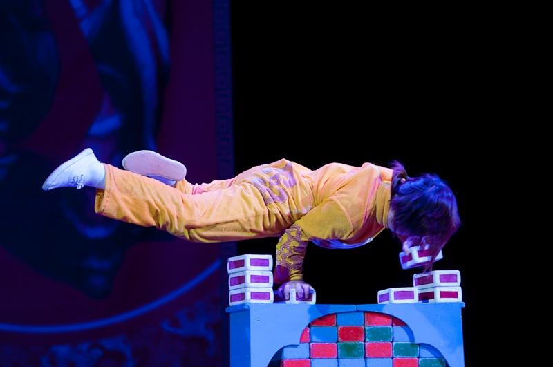 Большой Китайский Цирк