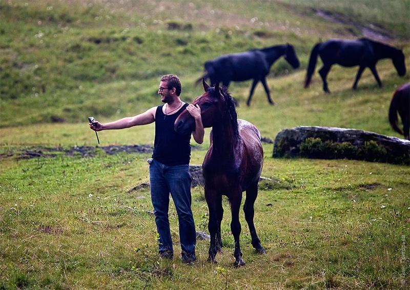 фото с конем