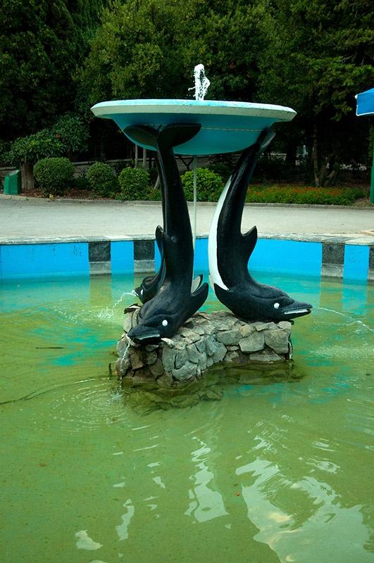 фонтан с дельфинами
