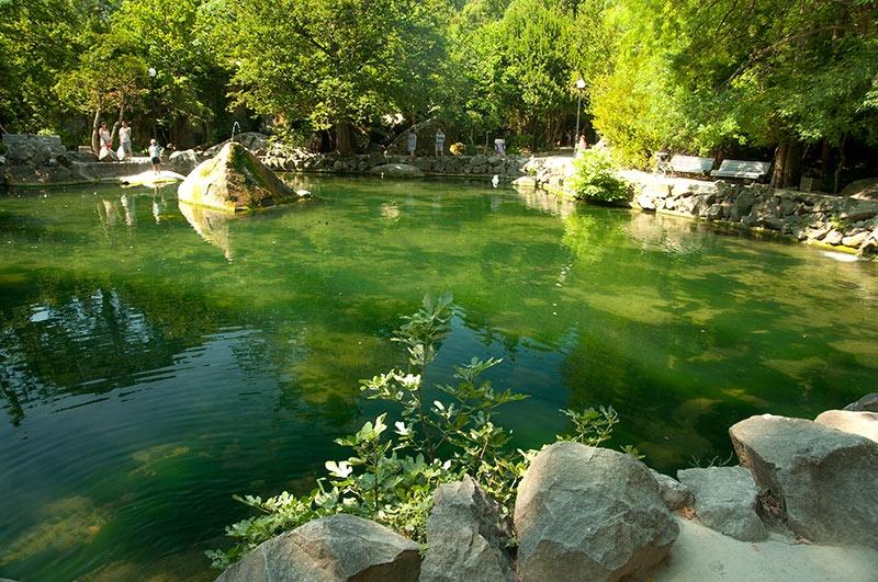 Форельное озеро