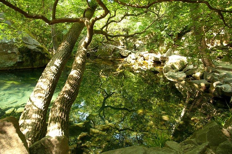 Озера Воронцовского парка