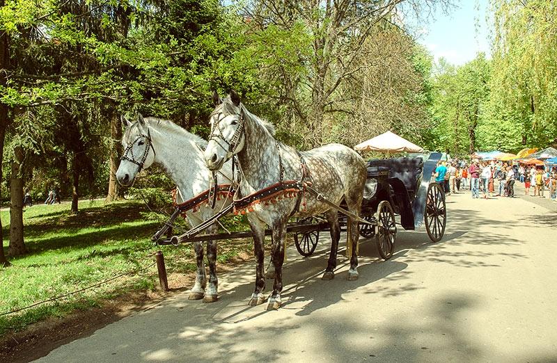 """Парк """"Софиевка. Умань. 7 чудо Украины"""