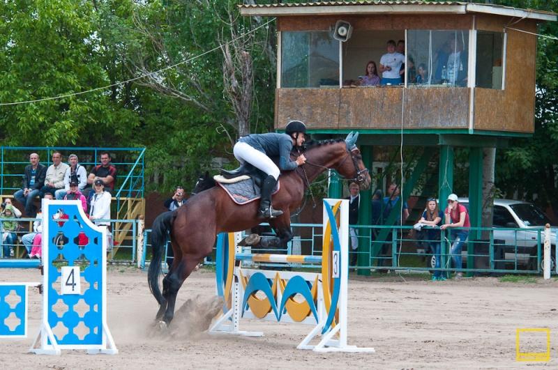 открытый чемпионат Николаевской области по конному спорту памяти А.Л.Зозули