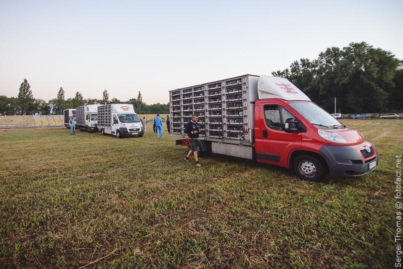 Голуби марафон Покровск Румыния